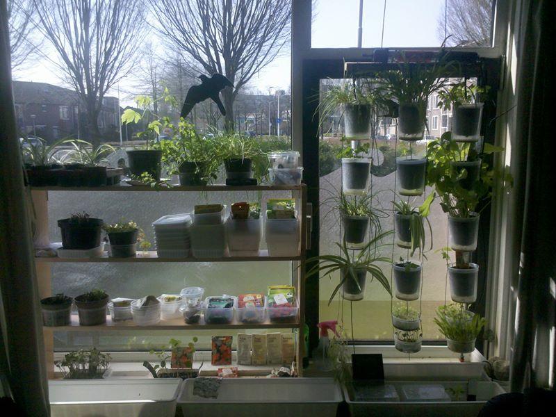 Windowfarm Modulair System (10)
