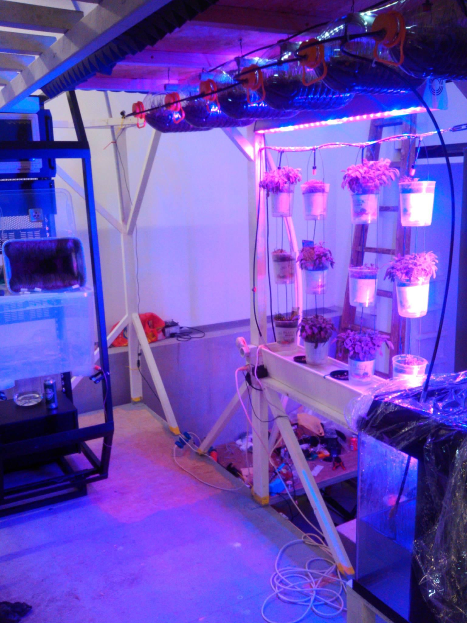 Windowfarm Modulair System (16)