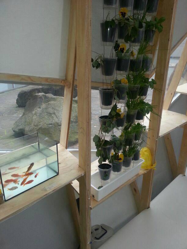 Windowfarm Modulair System (21)