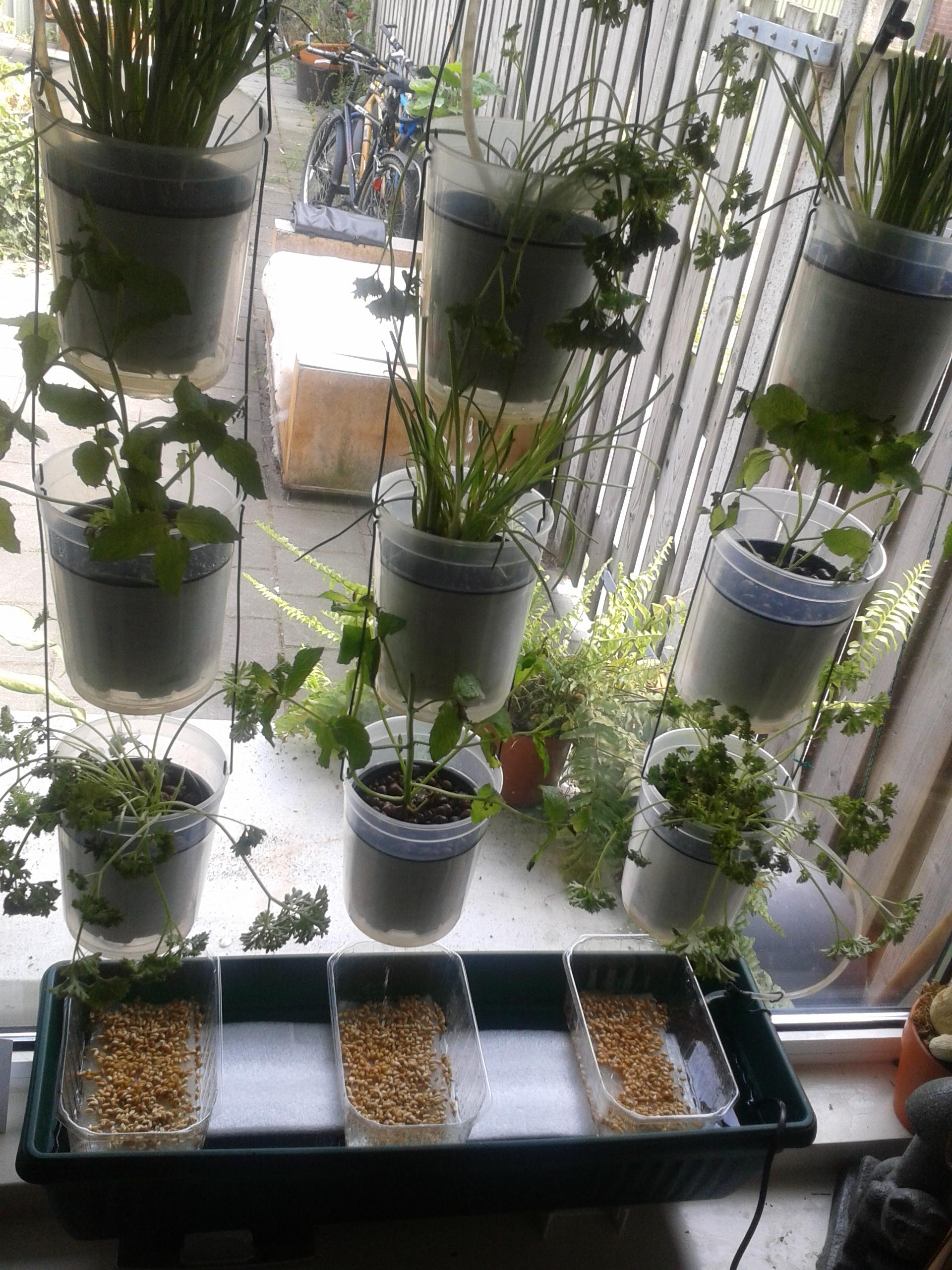 Windowfarm Modulair System (4)