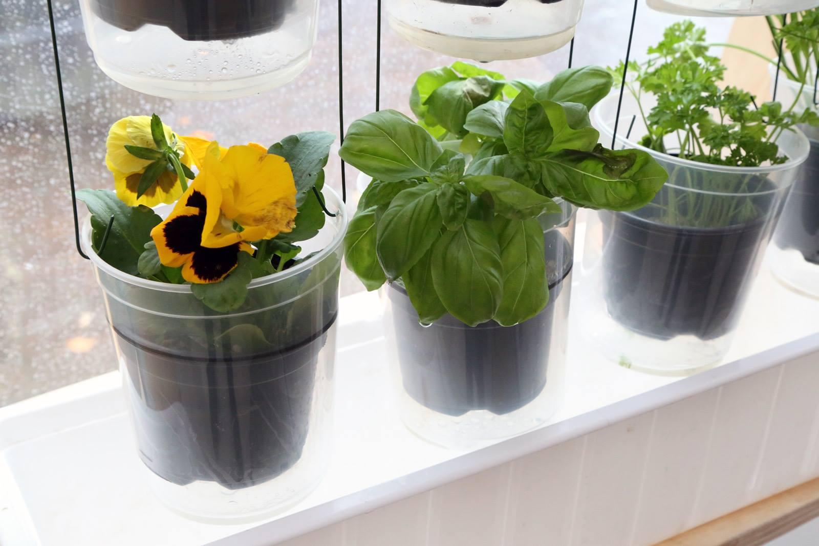 Windowfarm Modulair System (7)