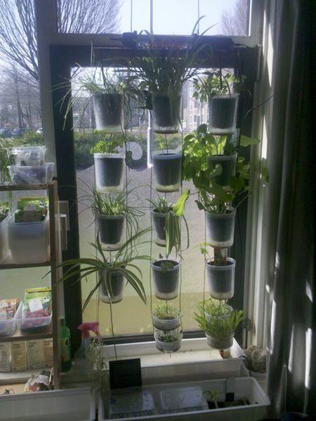 Windowfarm Modulair System (9)